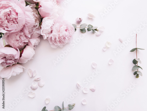 Beautiful, tender fresh blossoming aromatic pink Peony flowers and eucalyptus branches on the white background, top view, flat lay