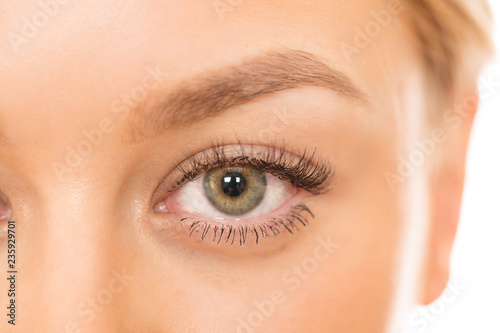Fotografie, Obraz  Cropped close up of an eye of a gorgeous naturally beautiful woman isolated on w
