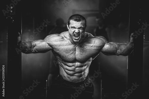 Fotografie, Obraz  Brutal strong bodybuilder athletic muscular men pumping up muscles with dumbbell