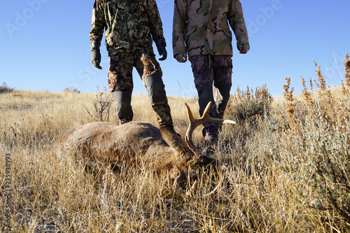 Valokuvatapetti Two hunters find their shot deer while on a deer hunt, in the field and prepare
