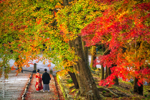 Poster Asia land Young women wearing traditional Japanese Kimono with colorful red maple trees in autumn