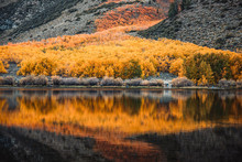 Reflection Of Colorful Trees On The Water In Autumn