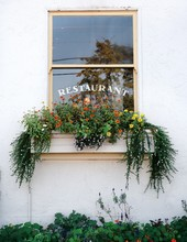 Flower Box With Flowers On The Side Of A Restaurant Wall