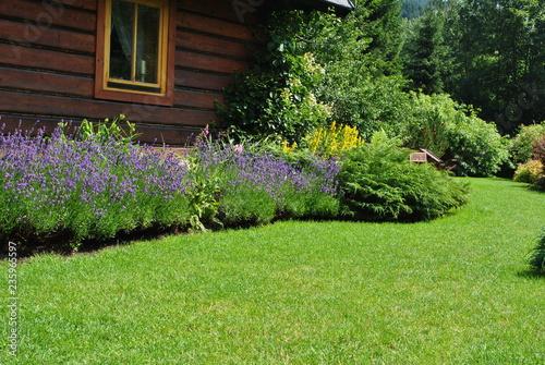 Papiers peints Jardin Ogród przy domu