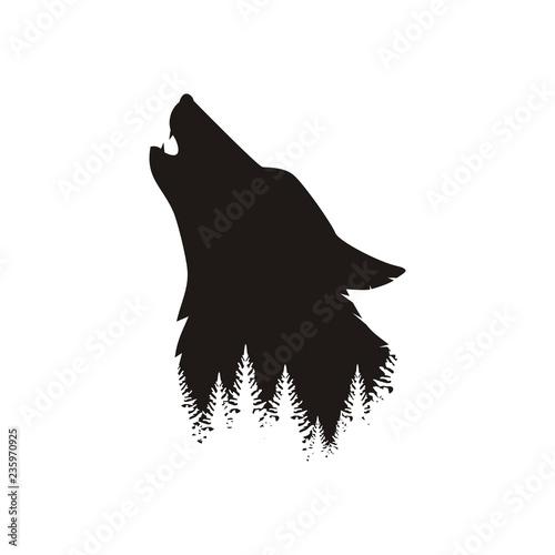 Fotografía  Профиль волка