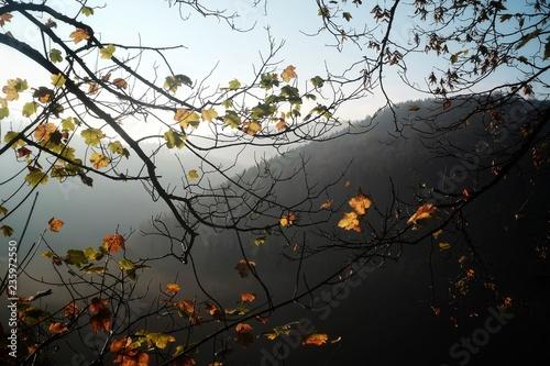Fotografia  Herbstliche Aussicht
