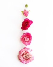 Vibrant Pink Roses Arranged On...
