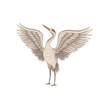 Red-crowned Crane Standing With Wide Open Wings. Graceful Bird With Long Thin Beak, Legs And Neck. Flat Vector