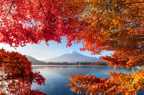 Foto auf AluDibond Wasserfalle Fall foliage in autumn season and Mountain Fuji near Fujikawaguchiko, Yamanashi. Trees in Japan with blue sky background.