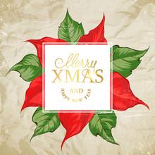 Christmas Card With Poinsettia...
