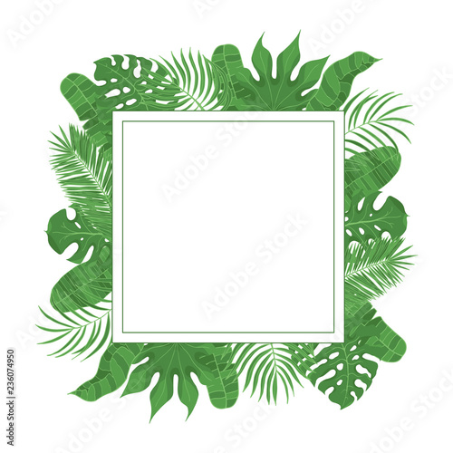Hand Drawn Tropical Leaves Weddiing Frame Aralia Monstera
