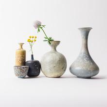 Ceramic Vases With Flowers