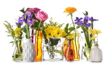 Various Beautiful Flowers In Vases On White Background