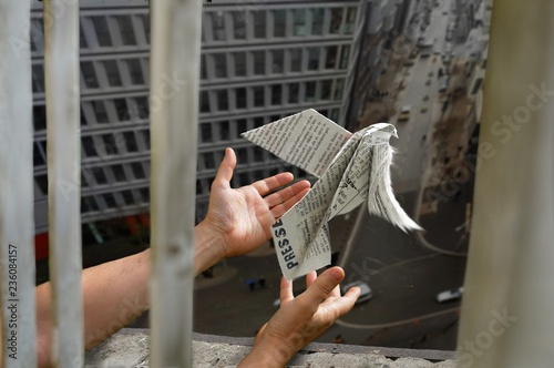 Photo Ein Journalist lässt  eine aus einer Zeitung gefaltete Friedenstaube aus dem Fen