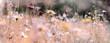 wildblumenwiese natur konzept trauer