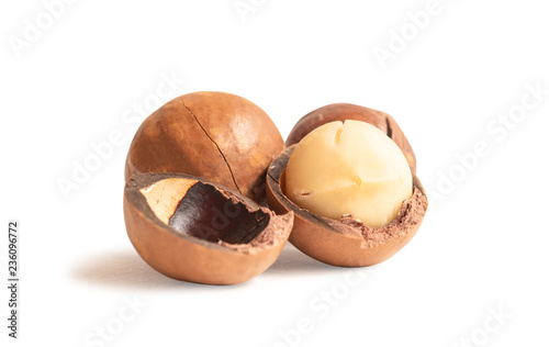 Aluminium Prints Grocery Macadamia nuts isolated on white background