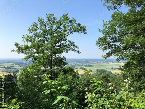 Fotografía  Scenic view from the Altenburg Castle