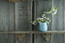 Twig Of Cherry Blossoms In Jar On Wooden Shelf