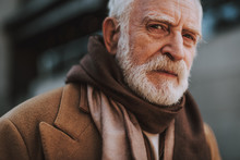 Close Up Portrait Of Senior Bearded Man In Brown Scarf Looking At Camera With Serious Expression