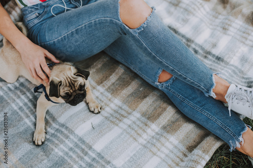 Photographie  Top view of little pug on plaid with his young female owner