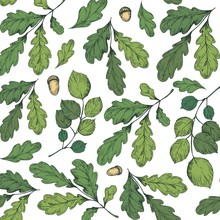 Seamless Pattern With Leaves, Tree Branches, Oak Leaves And Acorns. Vector Illustration