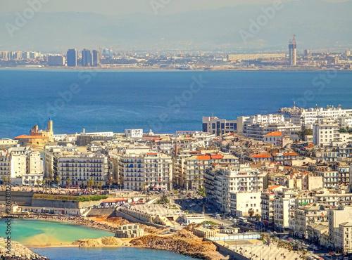Poster Olive Algiers cityscape, Algeria