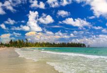 Turquoise Water On A Tropical Sandy Beach With A Treeline Of Bahamian Pine Trees In The Background And Beautiful Clouds In The Sky In The Caribbean, Freeport, Bahamas
