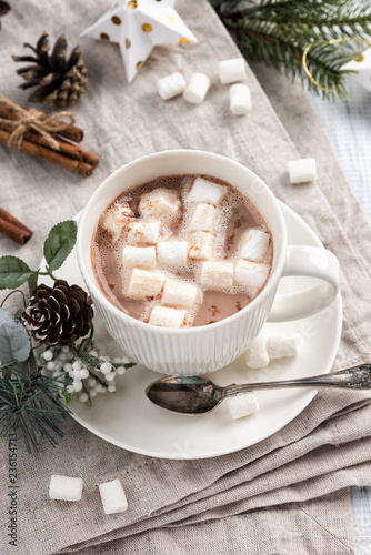 Cup Of Hot Chocolate With Marshmallow Cinnamon Sticks On The