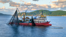 Commercial Fishing Boat Sailing In Bosphorus, Istanbul, Turkey
