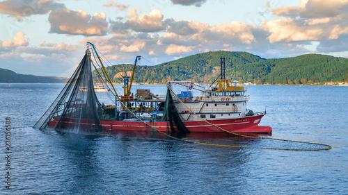 Stampa su Tela Commercial fishing boat sailing in Bosphorus, istanbul, Turkey