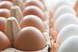 Hühner-Eier im Karton, Nahaufnahme