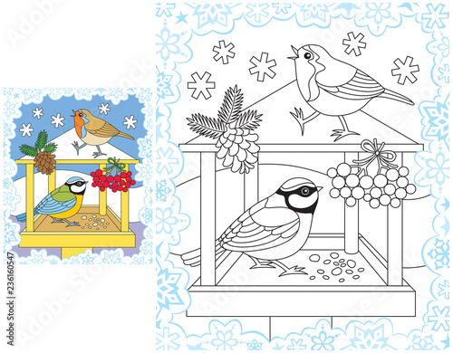 Snowflakes coloring pages winter birds feeder - Buy this stock