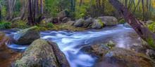 Beautiful Creek In The Forest In Spain, Near The Village Les Planes De Hostoles In Catalonia