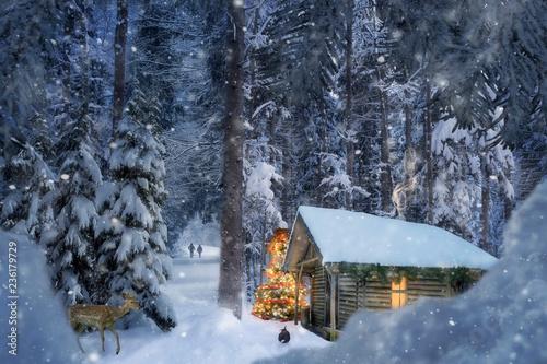 Weihnachtsedition 8