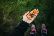 POV Of Man Or Woman Hold Dry Fruits And Nuts In Palm Of Hand, Delicious Organic And Natural Energy Bite Snack. Apricots, Figs And Dates For Healthy Lifestyle During Camping Outdoors Or Hike