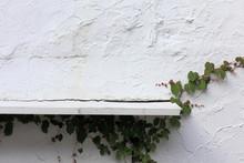 古いレトロな壁と棚