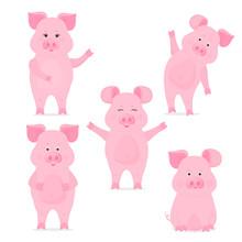 A Set Of Cute Piggy Characters...