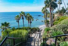 Beautiful Scenery Around Laguna Beach