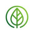 zielony liść wektor logo
