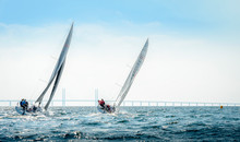 Yachts During Race In Malmo, Sweden