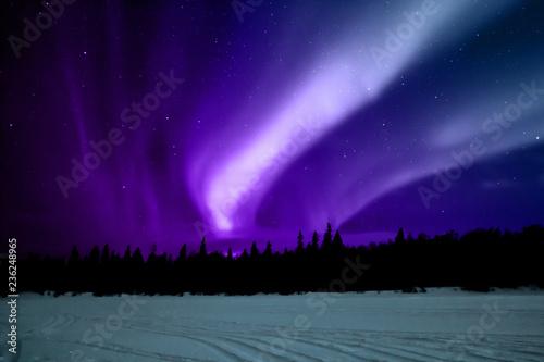 Fotobehang Violet Aurora boreale Lapponia