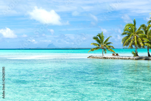 Staande foto Eiland travel, seascape and nature concept - tropical beach with palm trees and sunbeds in french polynesia