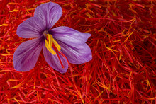 Flowers Of Saffron After Colle...