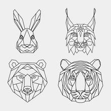 Set Of Abstract Polygonal Anim...