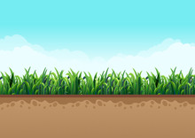 Ground  With Green Grass Along With Nature And Sky With Beautiful Clouds. Vector Illustrations