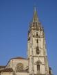 La Santa Iglesia Basílica Catedral Metropolitana de San Salvador de Oviedo.