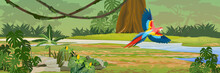 Macaw Parrot Flies Through The...