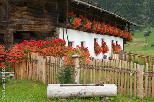 Foto  Südtiroler Bauernhaus mit Geranienschmuck im Ridnauntal