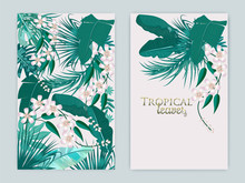 Vector Tropical Background Set...