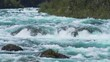 rapids of the Petrohue River in the Vicente Perez Rosales National Park